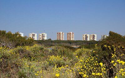 Una urbanización en un Parque Natural – El Saler, parte I